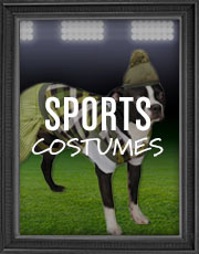 Halloween Sports Costumes