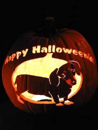 037d2cb1 Pumpkin carving has been elevated to an art form. And now our pets can be  the subject of the fancy pumpkin-carving craze!