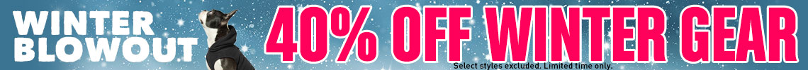 40% Off Winter