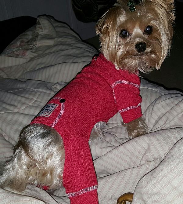 d83cc0230cf0 fabdog® Thermal Dog Pajamas - Red