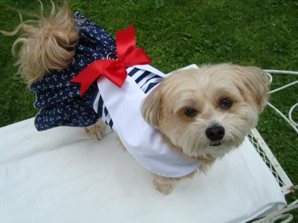 Nautical Dog Dress with Matching Leash by Dog    | BaxterBoo