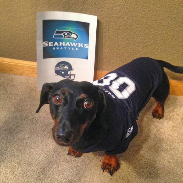 Seattle Seahawks Dog Jersey Customer Photos - Send us your photo! Hamlet ca735a572