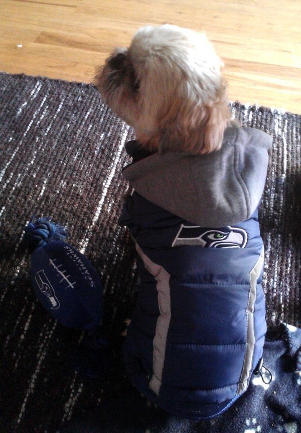 afa6764cc Seattle Seahawks Dog Puffer Vest | BaxterBoo