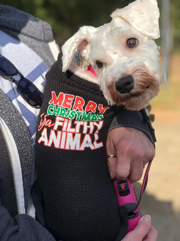 a26a8ca7 Ya Filthy Animal Dog Sweater - Black Customer Photos - Send us your photo!  Prudence