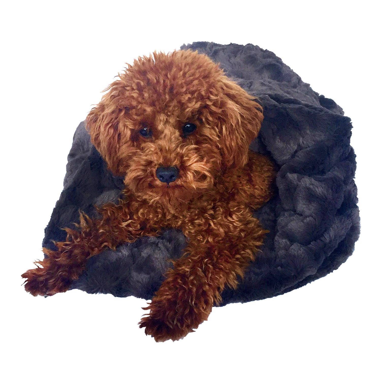 3-in-1 Cozy Dog Cuddle Sack - Bella Charcoal