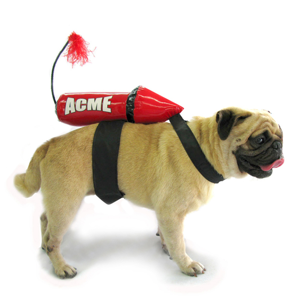 Acme Rocket Dog Costume  sc 1 st  BaxterBoo & Acme Rocket Dog Costume with Same Day Shipping | BaxterBoo