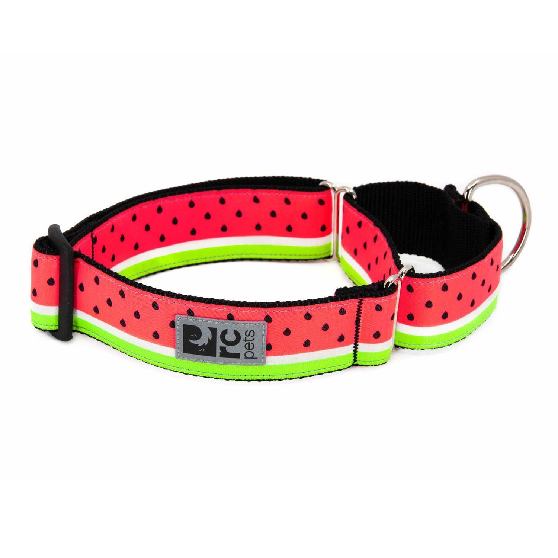 All Webbing Martingale Dog Training Collar - Watermelon