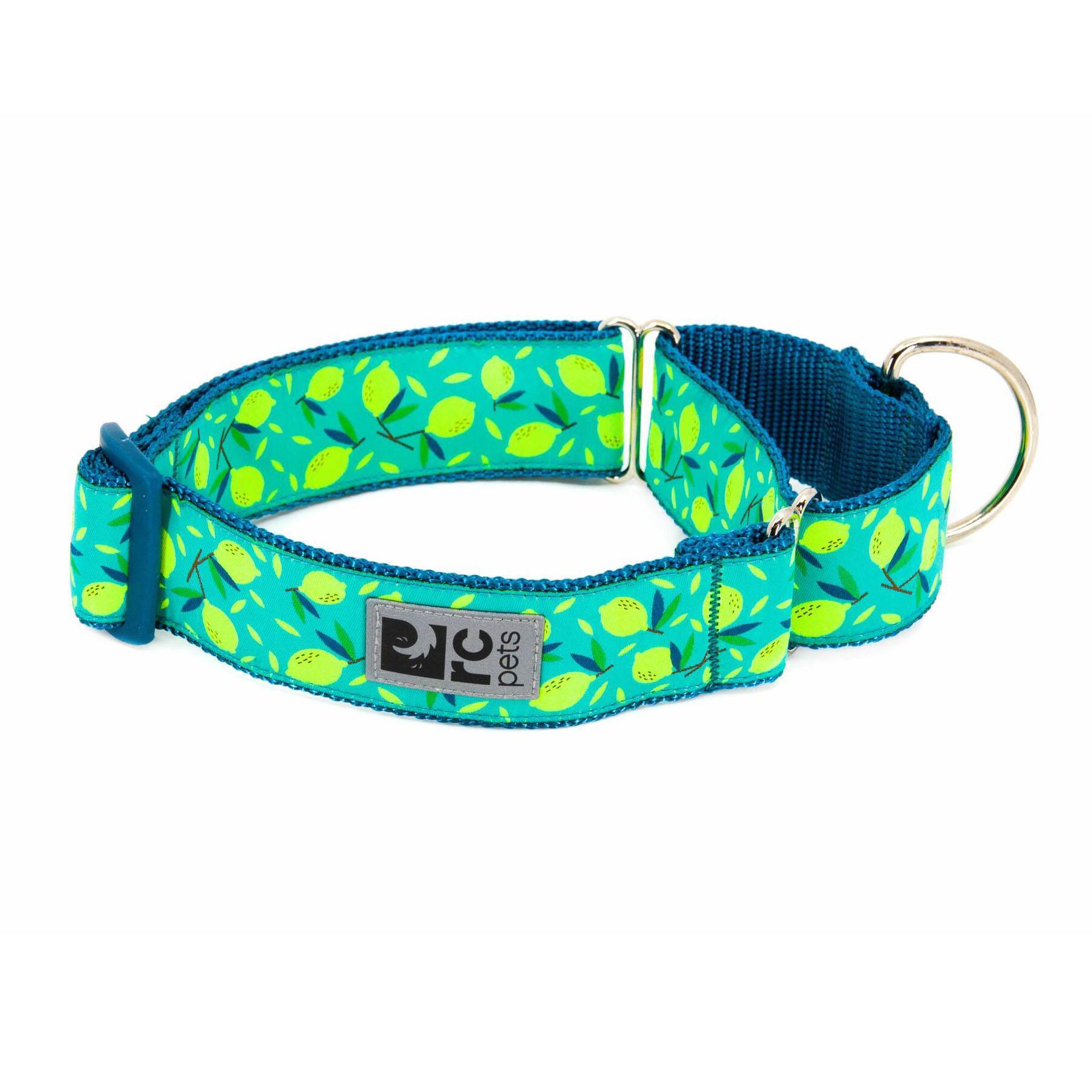 All Webbing Martingale Dog Training Collar - Lemonade