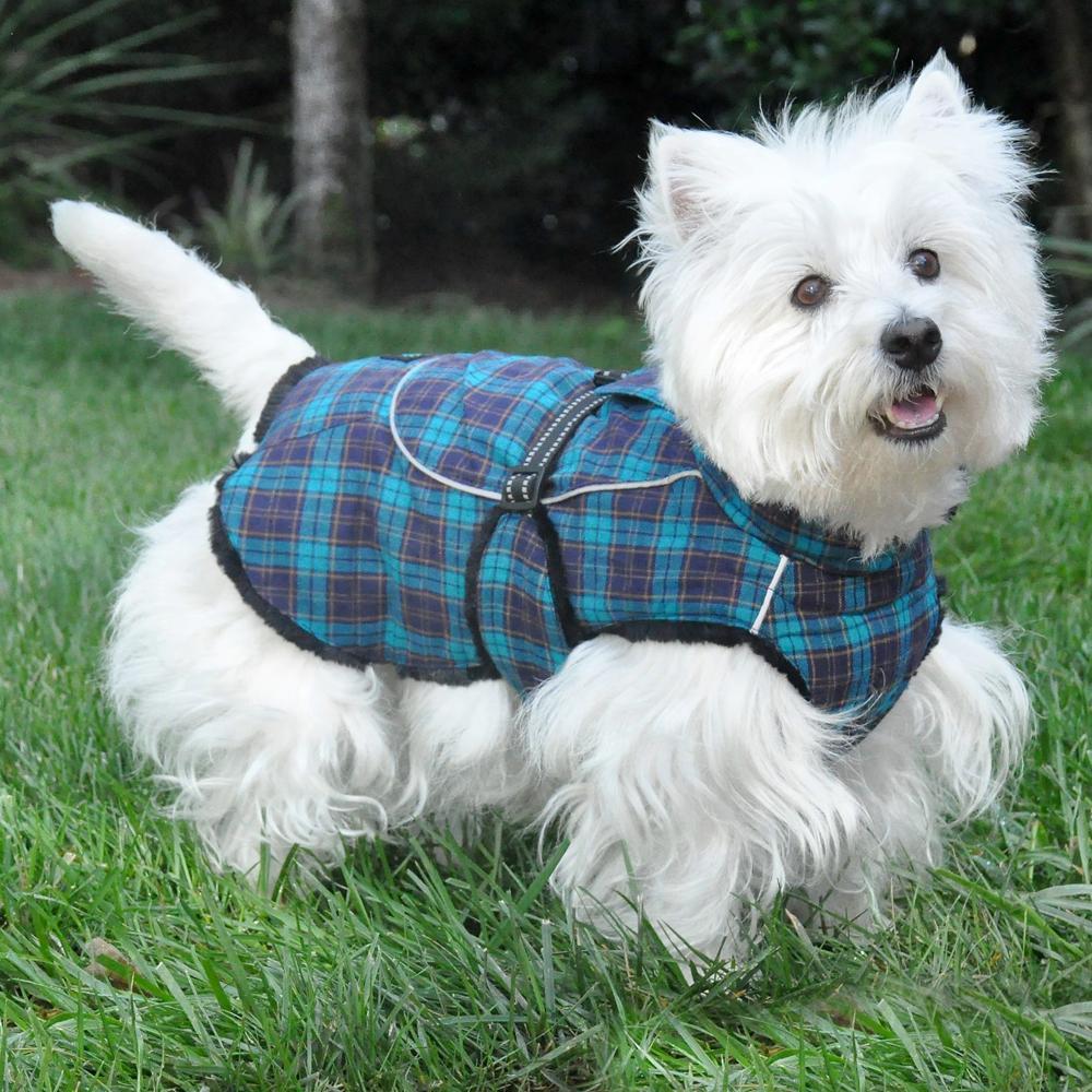 Flannel Dog Collar