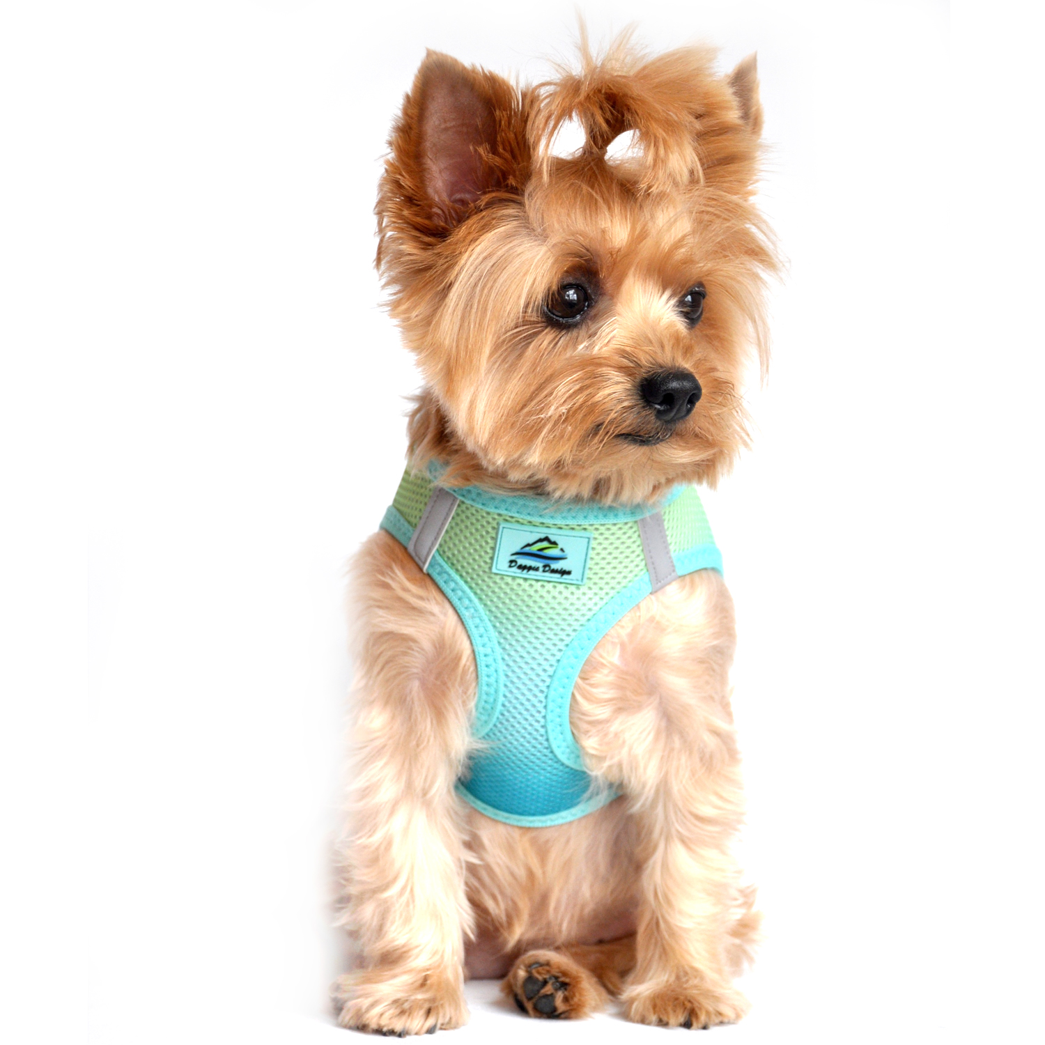 American River Choke-Free Dog Harness by Doggie Design - Aruba Blue Ombre