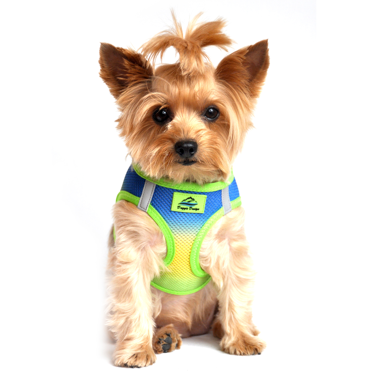American River Choke-Free Dog Harness by Doggie Design - Cobalt Sport Ombre