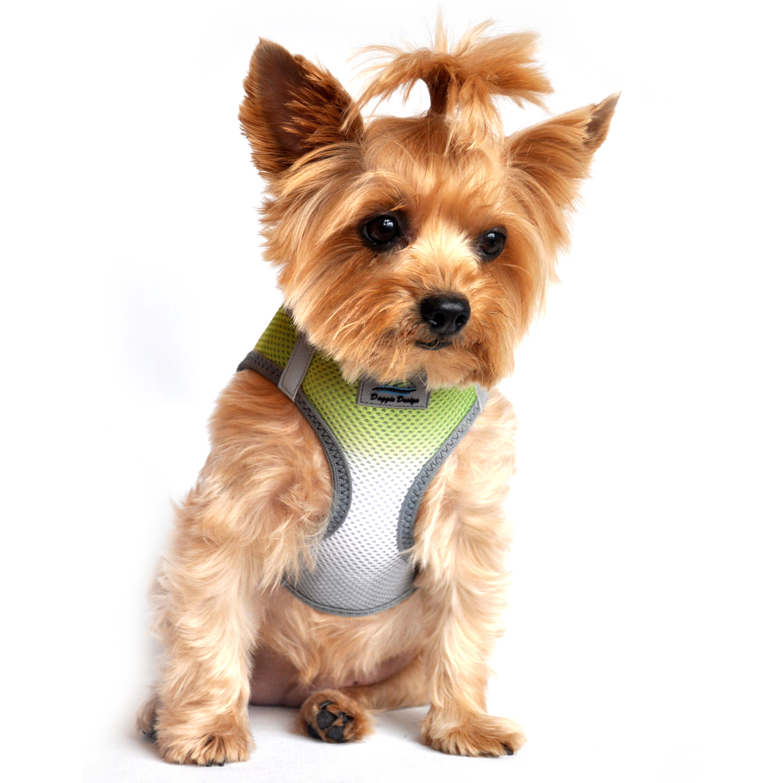 American River Choke-Free Dog Harness by Doggie Design - Limestone Gray Ombre