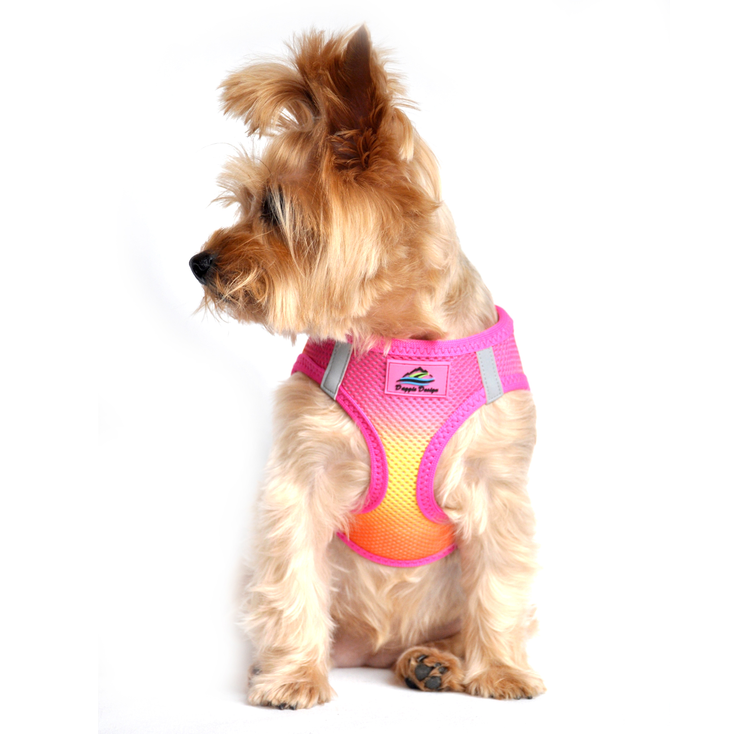 American River Choke-Free Dog Harness by Doggie Design - Raspberry and Orange Sorbet Ombre