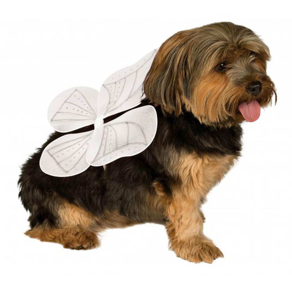 Angel Wings Dog Costume - White