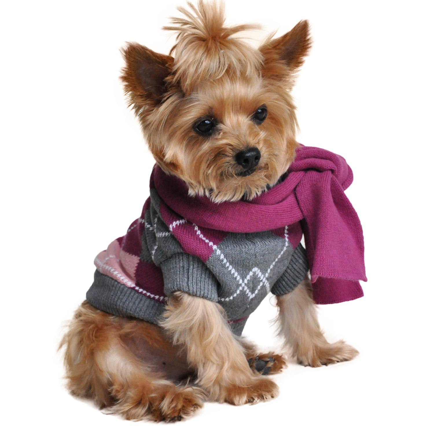 Argyle Purple Dog Sweater with Scarf by Doggie Design
