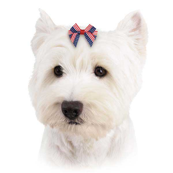 Aria America's Pup Dog Bow