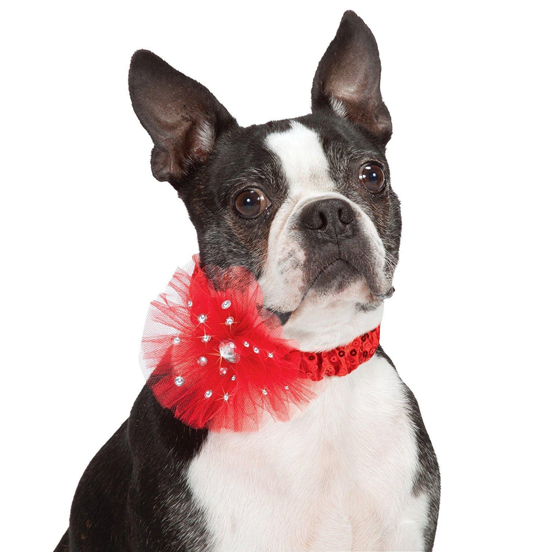Aria Starburst Dog Scrunchy - Red
