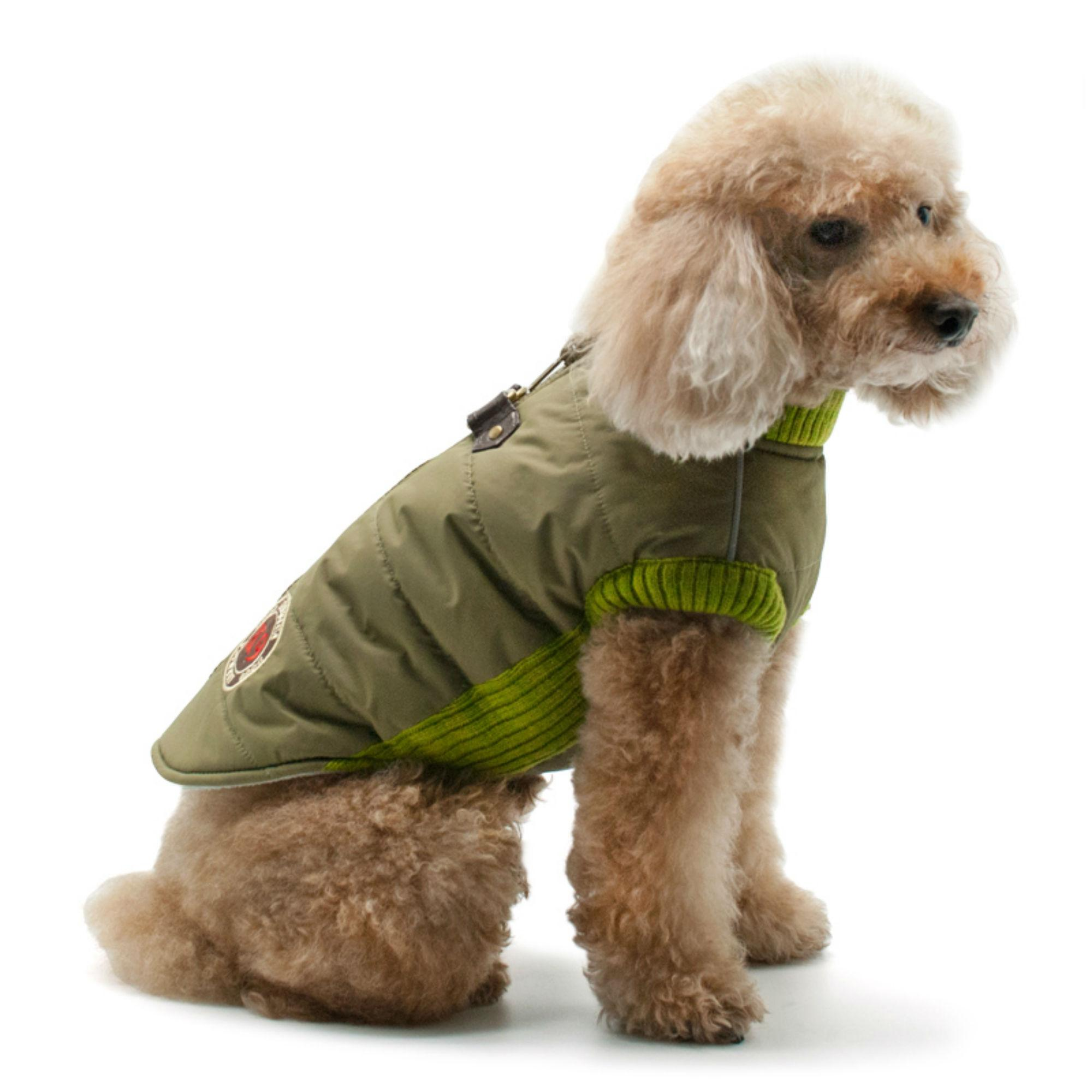 Army Runner Dog Coat by Dogo - Green