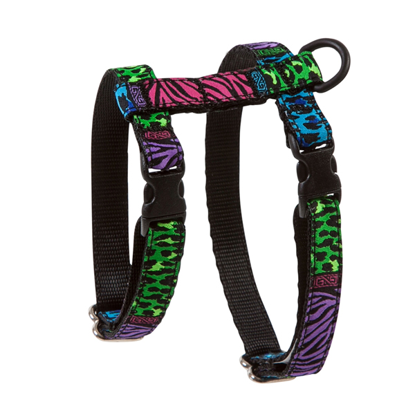 Kitty RC Cat Harness - Back to the Wild