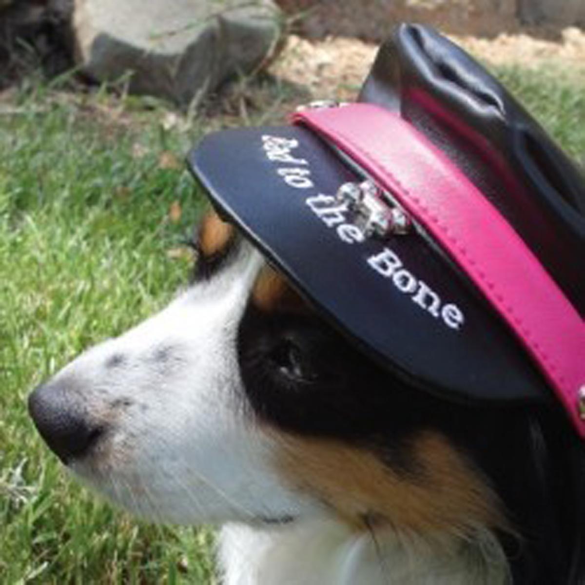 Bad to the Bone Biker Dog Hat - Black with Magenta Trim