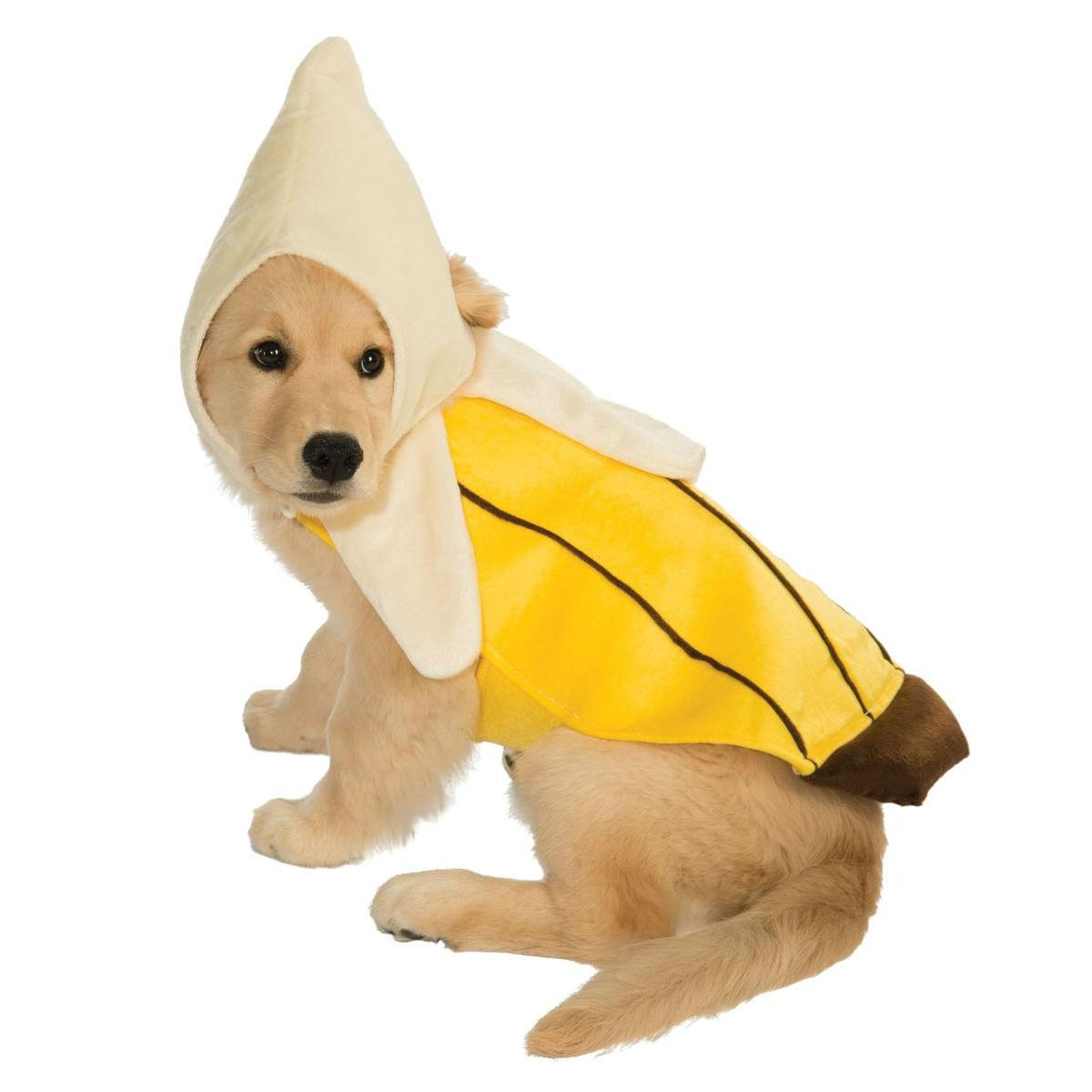 Banana Dog Costume by Rubies