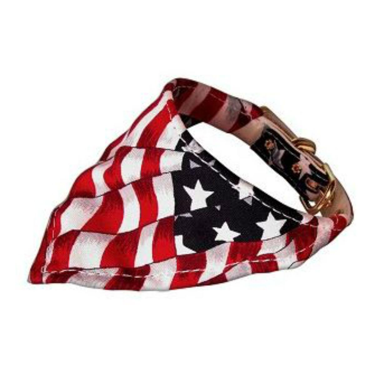 Bandana Dog Collar - America the Beautiful