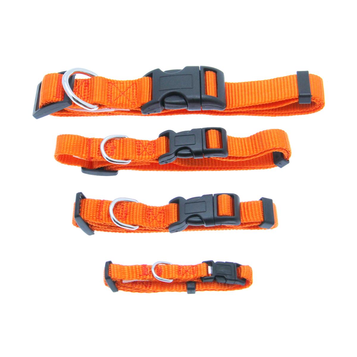 Barking Basics Dog Collar - Orange