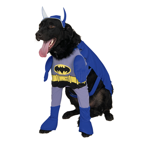 Batman u0027The Brave u0026 The Boldu0027 Dog Halloween Costume  sc 1 st  BaxterBoo : batman costumes for dogs  - Germanpascual.Com