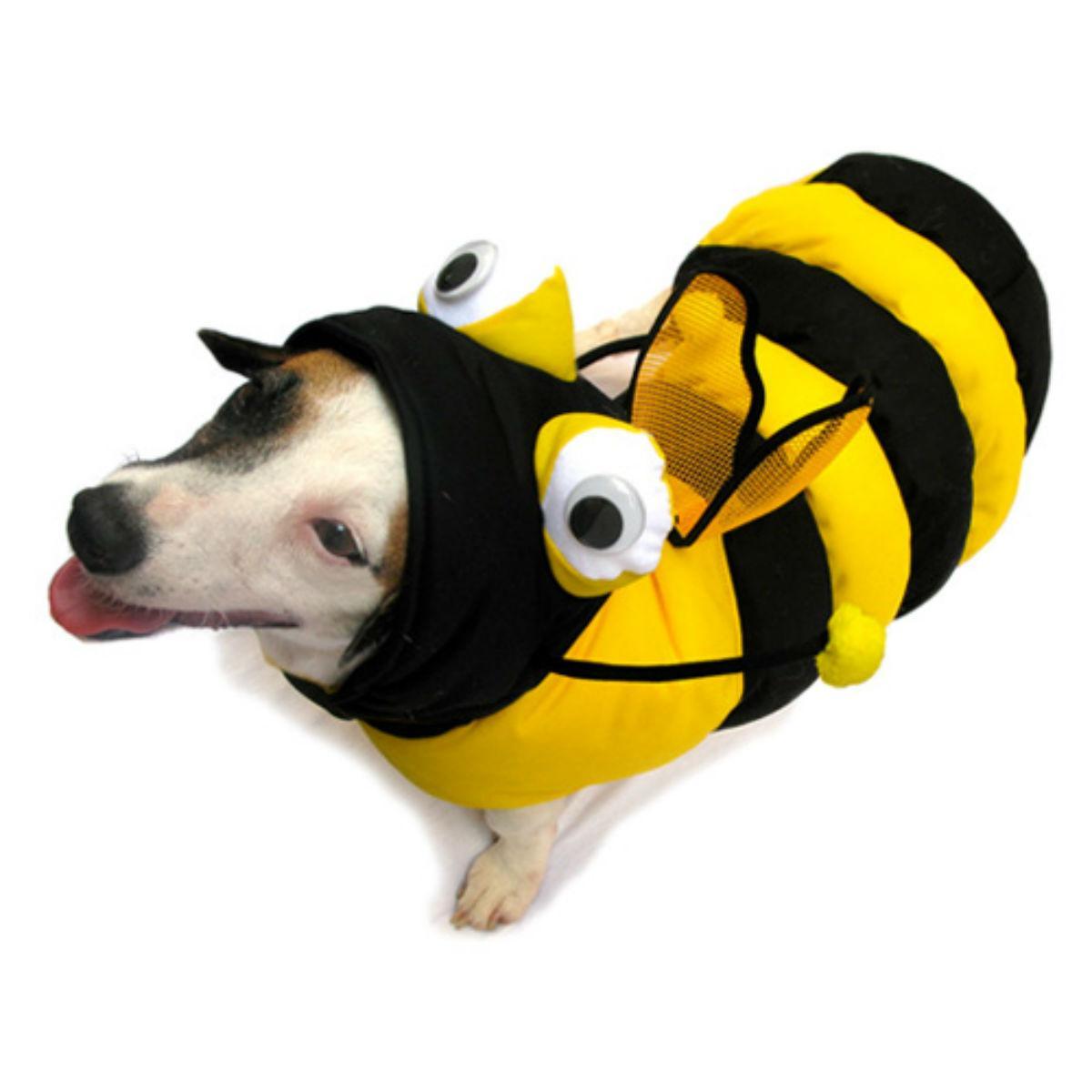Bee 3-D Halloween Dog Costume