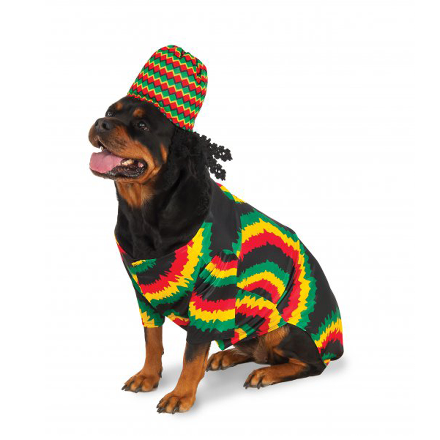 big dog rasta dog costume baxterboo