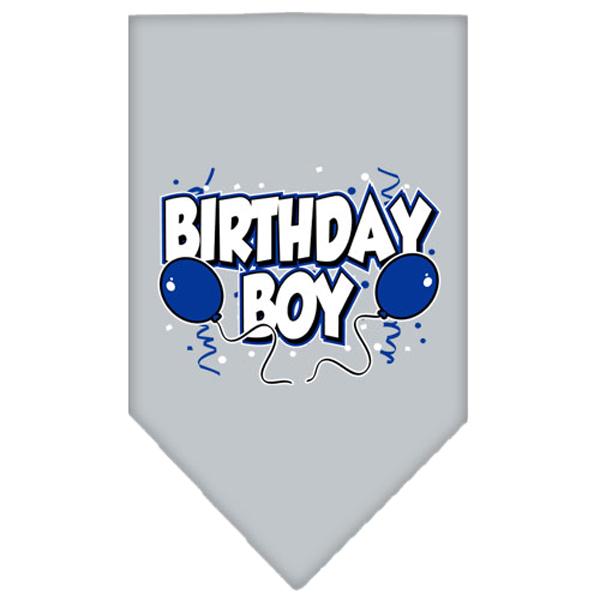 Birthday Boy Screen Print Dog Bandana - Gray