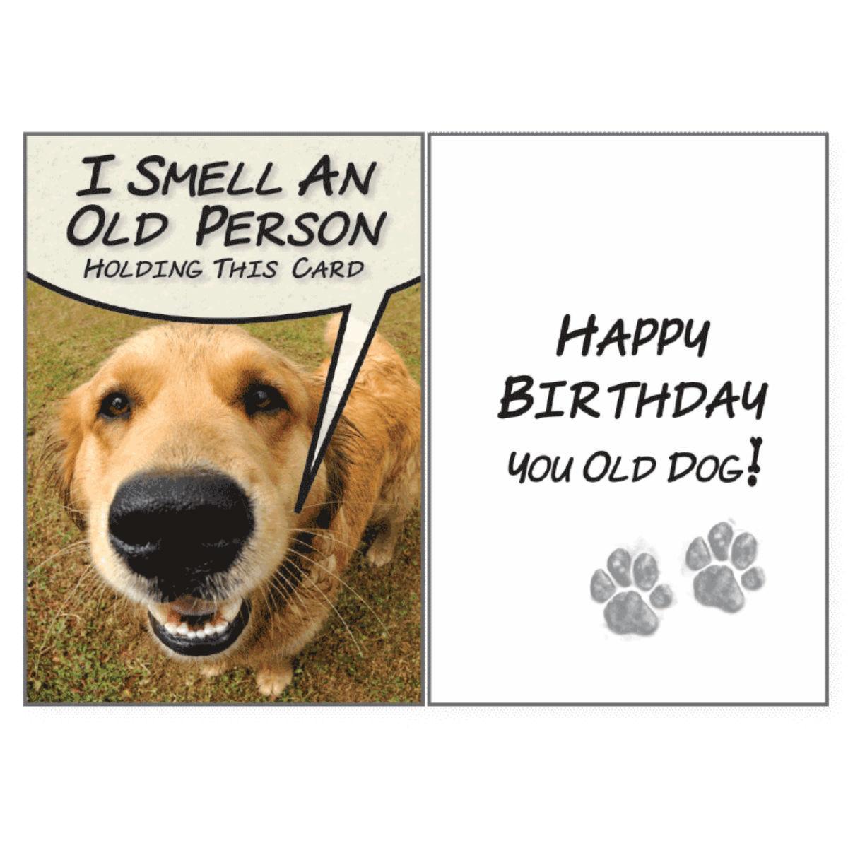 Birthday Greeting Card By Dog Speak