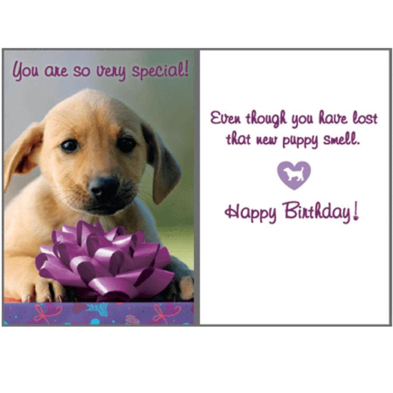 Birthday Greeting Card By Dog Speak