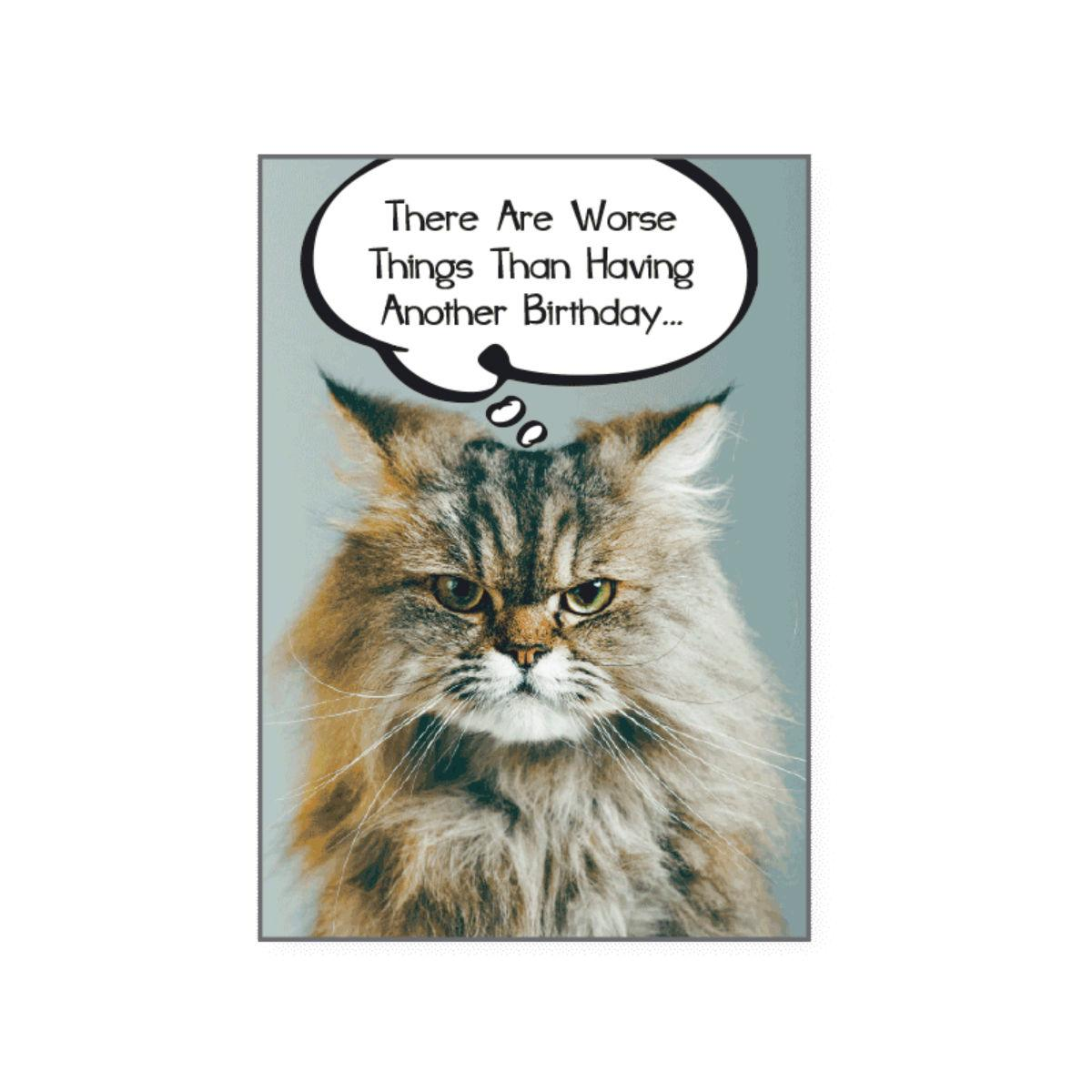 Birthday Greeting Card by Dog Speak - There are worse things than..