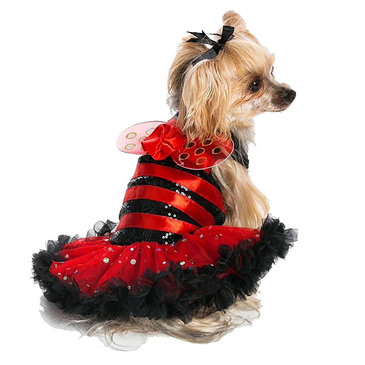 sc 1 st  BaxterBoo & Ladybug Dog Dress by Pawpatu with Same Day Shipping | BaxterBoo