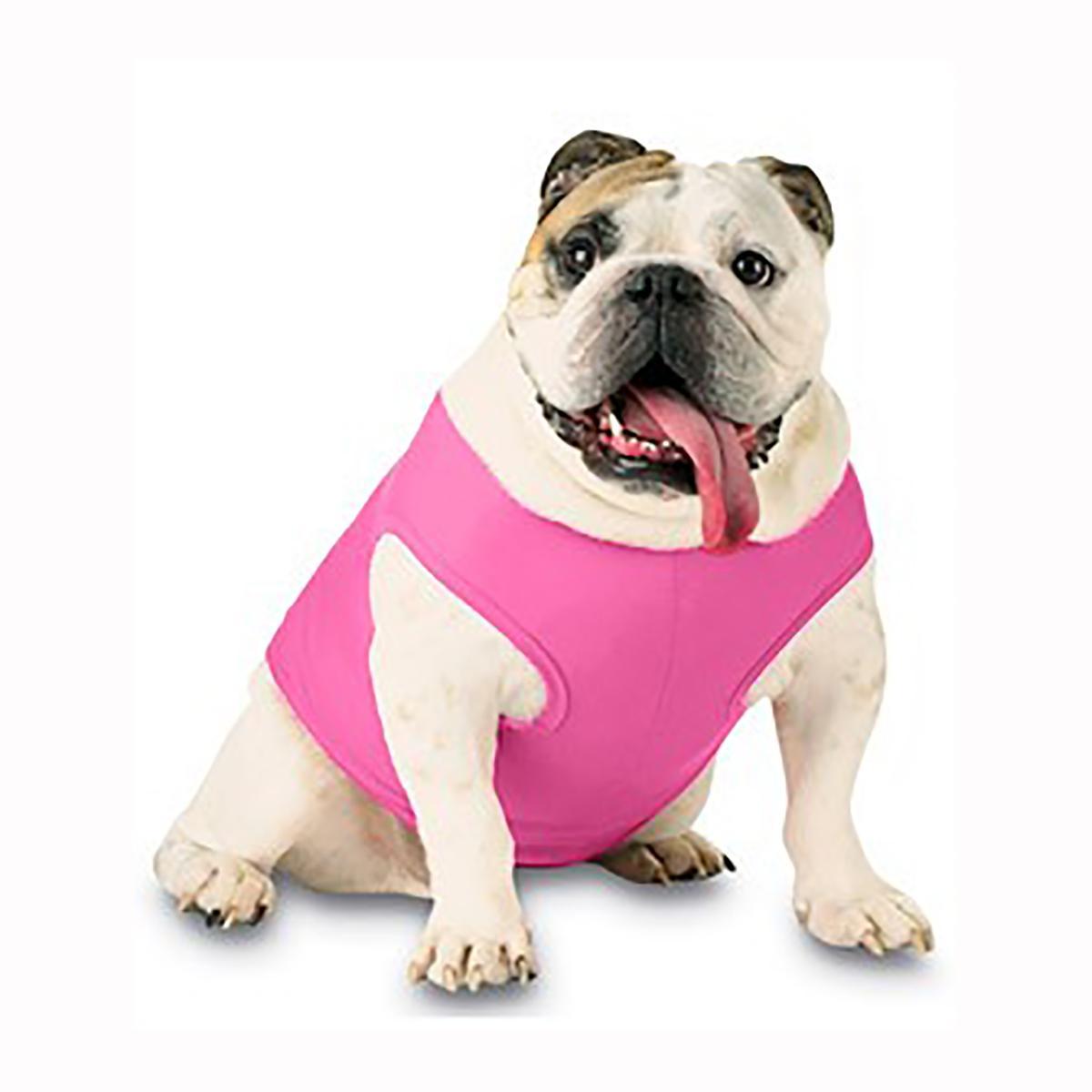 Blank Ribbed Dog Tank - Raspberry