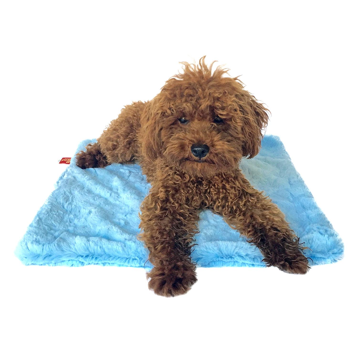 Bella Dog Blanket by The Dog Squad - Light Blue