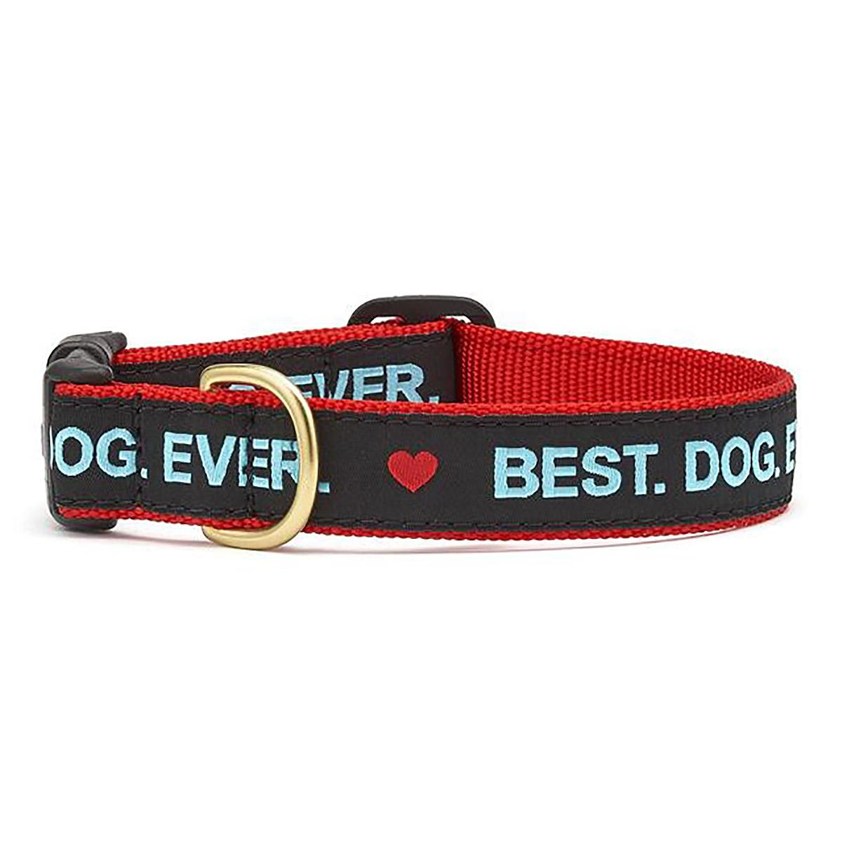 Best. Dog. Ever. Dog Collar by Up Country