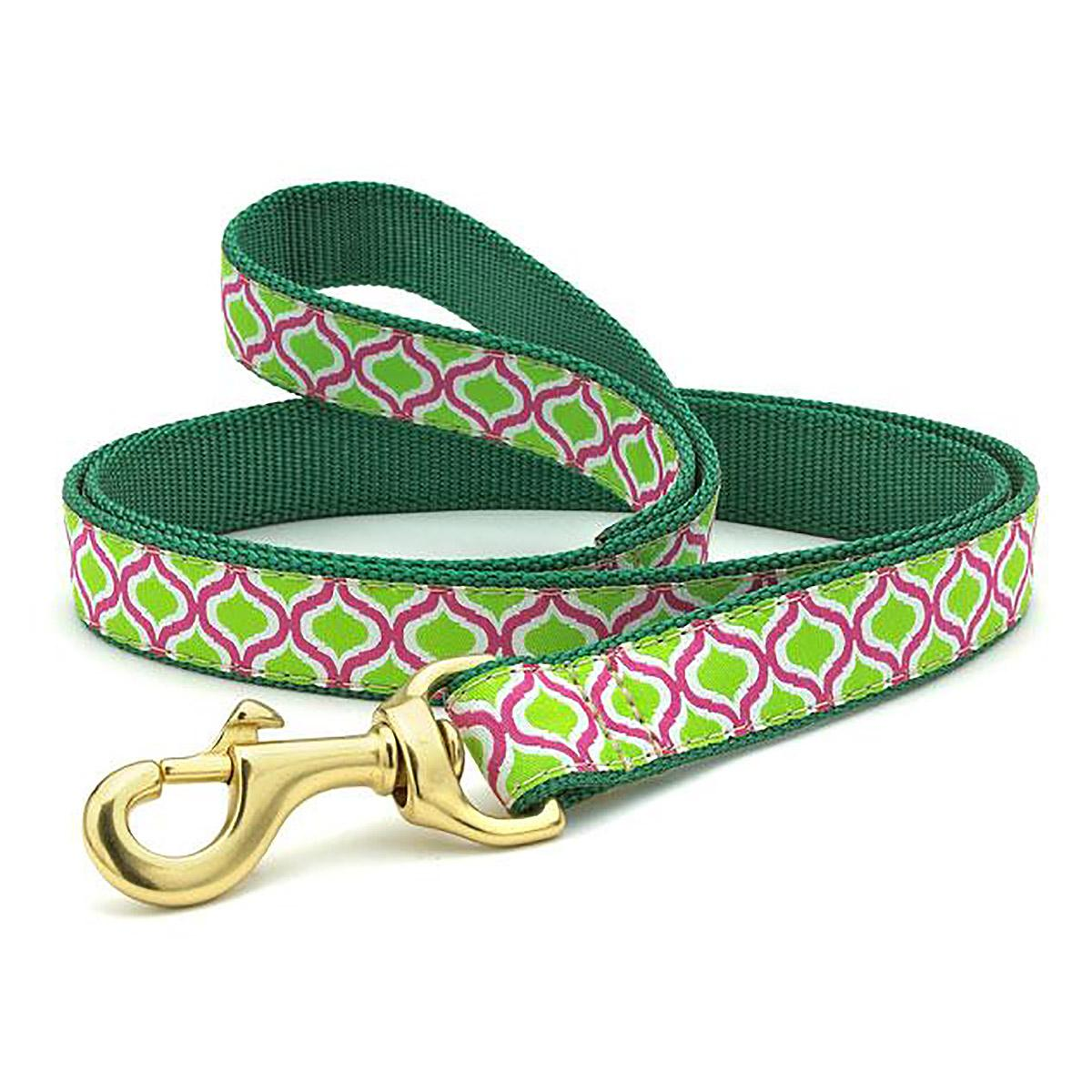 Green Kismet Dog Leash by Up Country