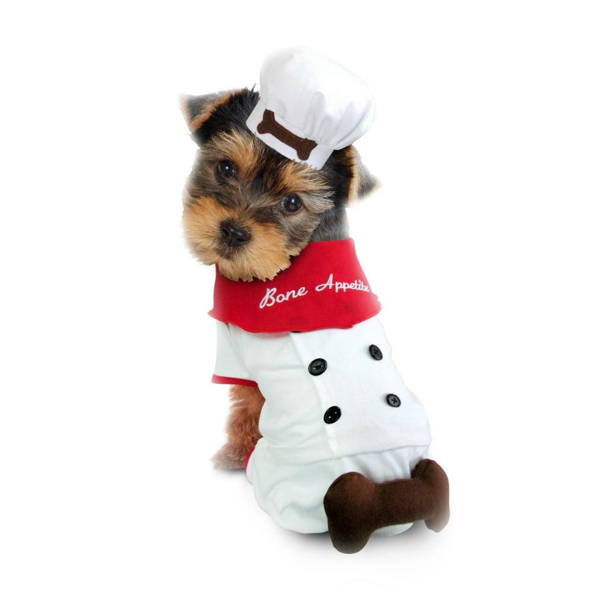 Bon Appetite Chef Halloween Dog Costume