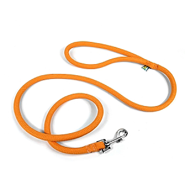 Braided Dog Leash by Yellow Dog - Orange