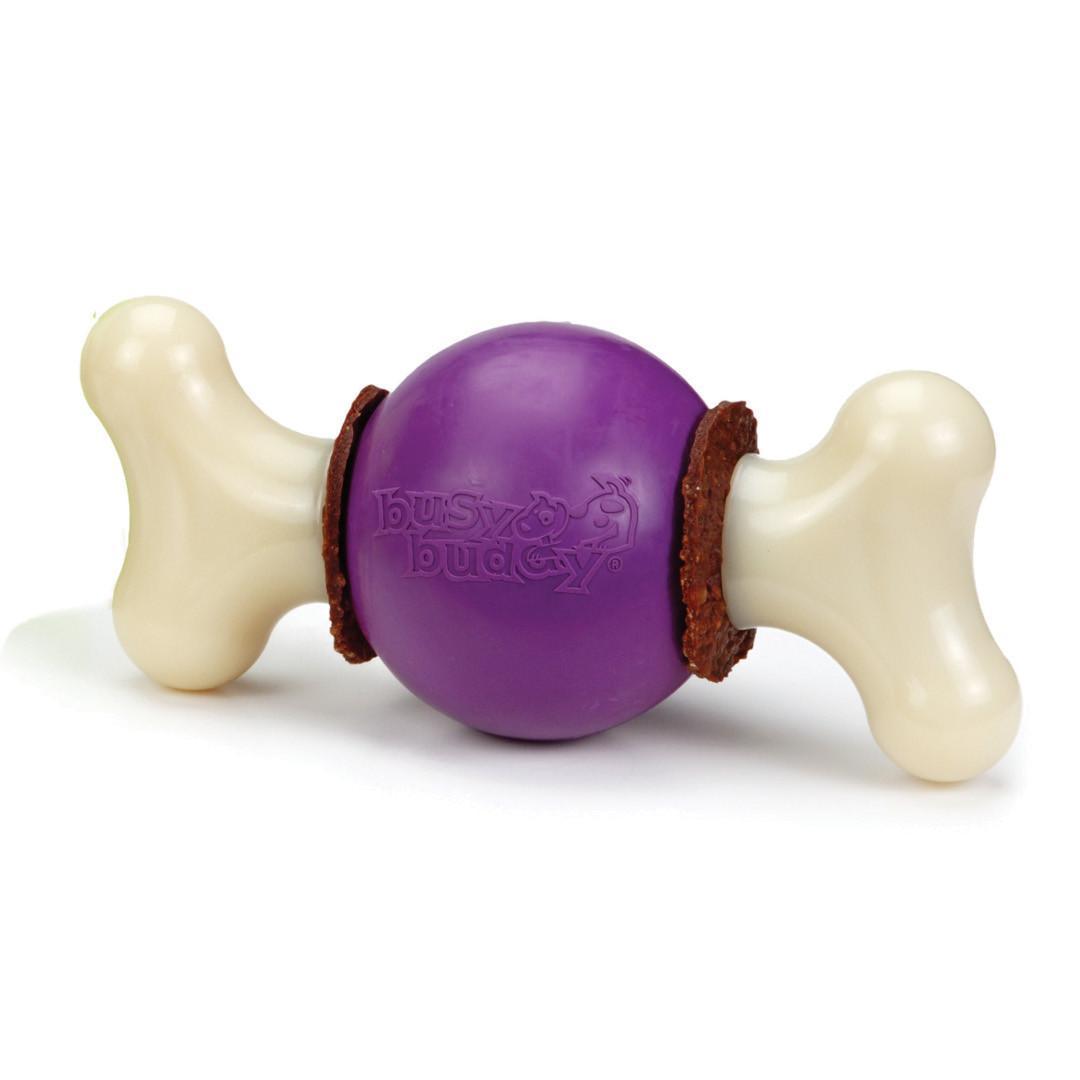 Busy Buddy Bouncy Bone Dog Chew Toy