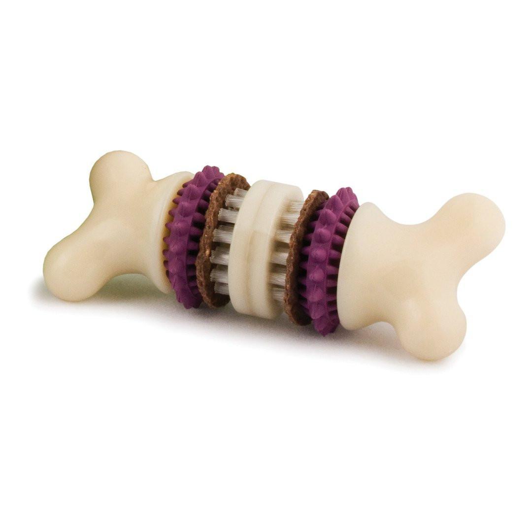 Busy Buddy Bristle Bone Dental Toy