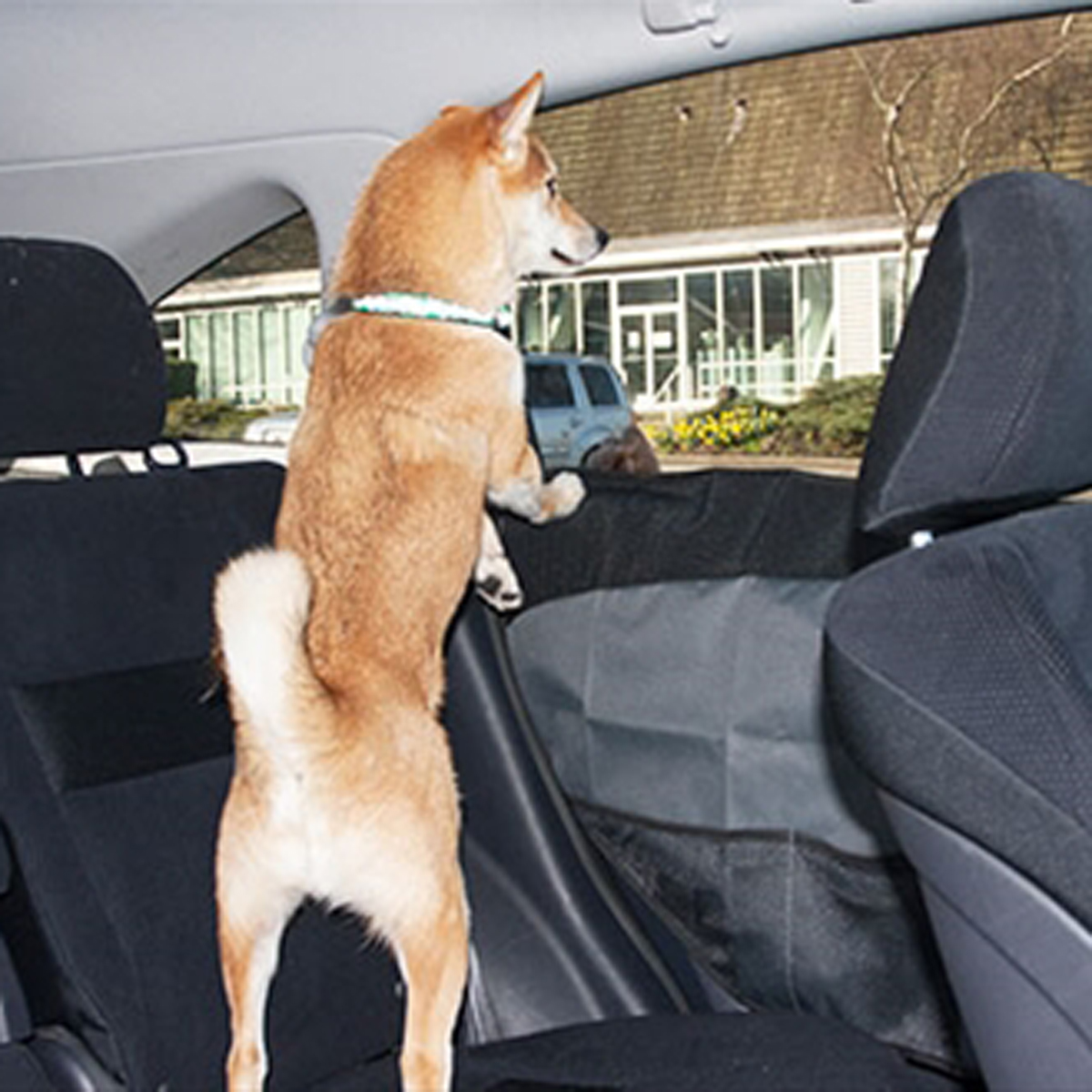 Canine Friendly Car Door Protector Charcoal With Same Day Shipping