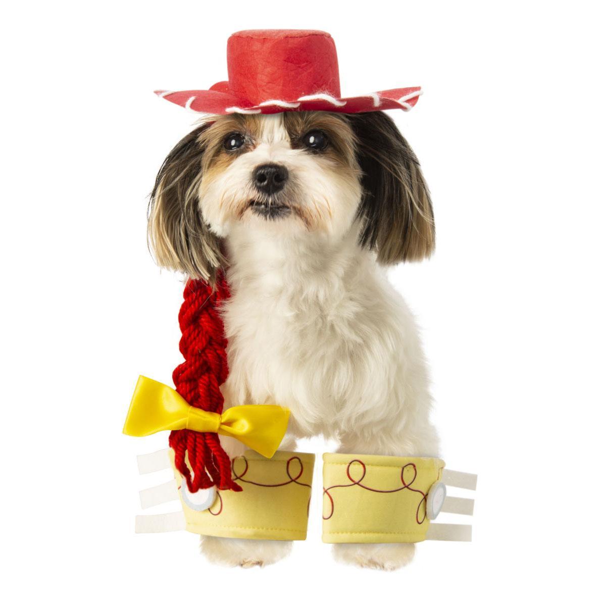 Toy Story Jessie Pet Costume Accessory Set