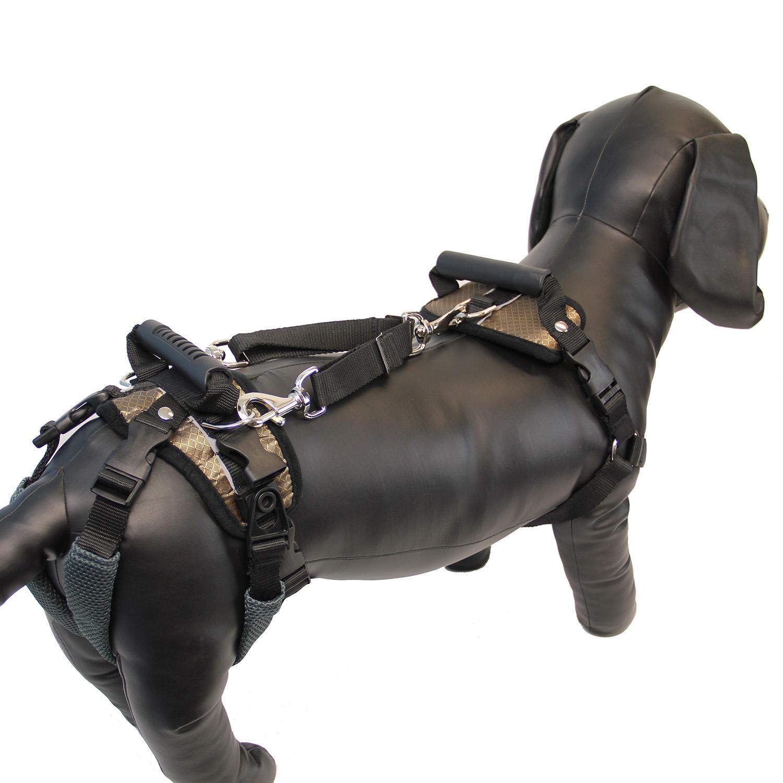 PetSafe Solvit CareLift Dog Lifting Harness -...   BaxterBoo