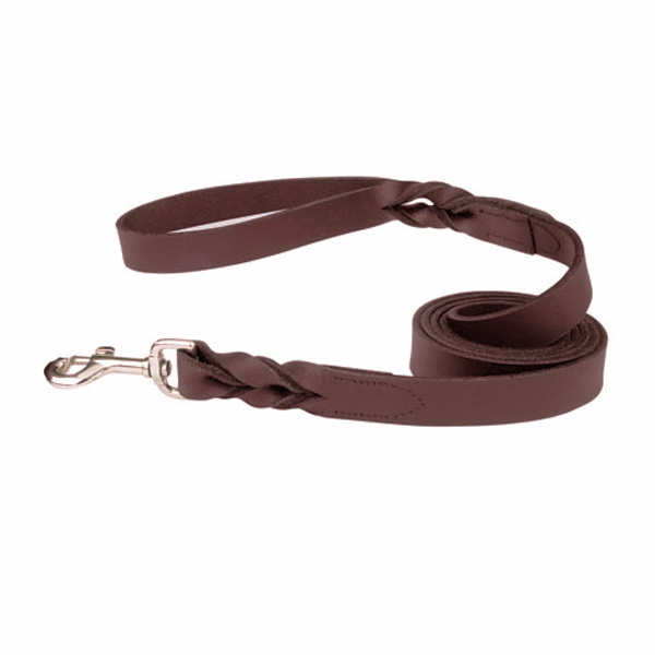 Casual Canine Flat Leather Braided Ends Dog Leash - Brown