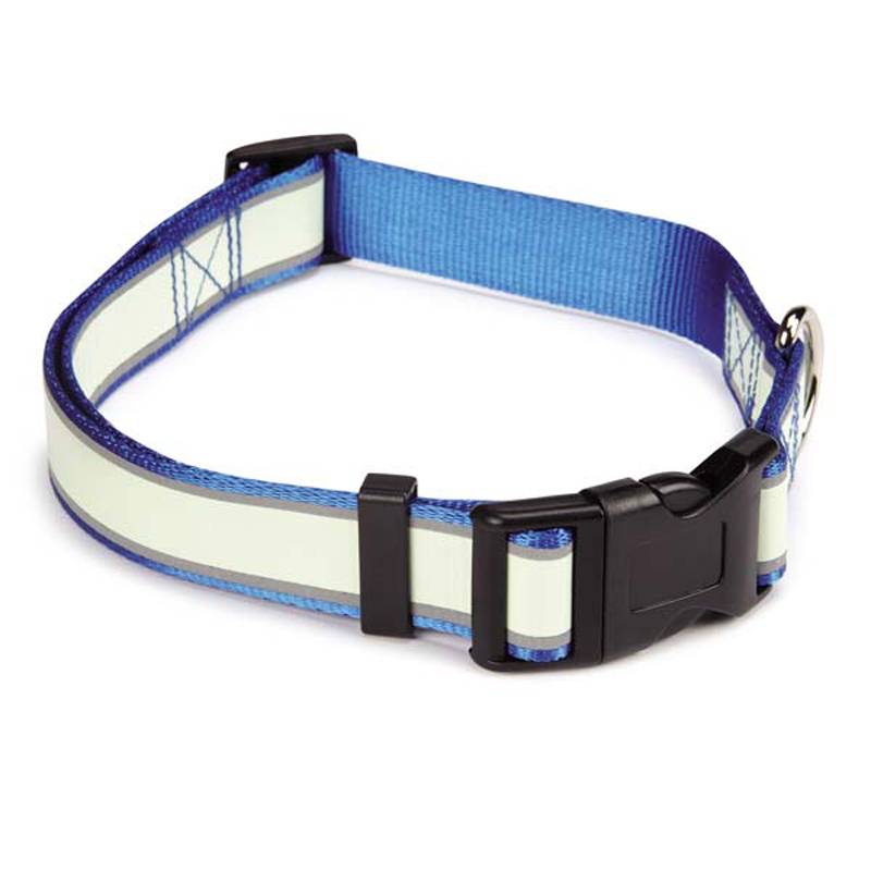 Casual Canine Glow Nylon Dog Collar - Blue