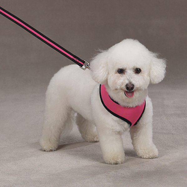 Casual Canine Mesh Dog Harness - Pink