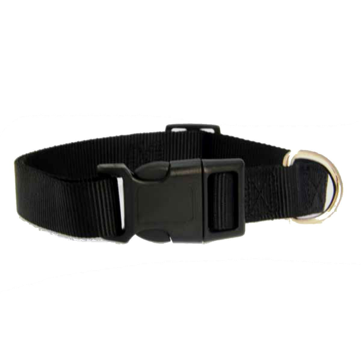 Casual Canine Nylon Dog Collar - Jet Black